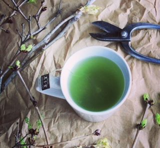 our best-selling mecha, bud tea