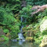 Waterfalls at Portland Japanese Garden