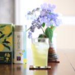 cold brew yuzu sencha